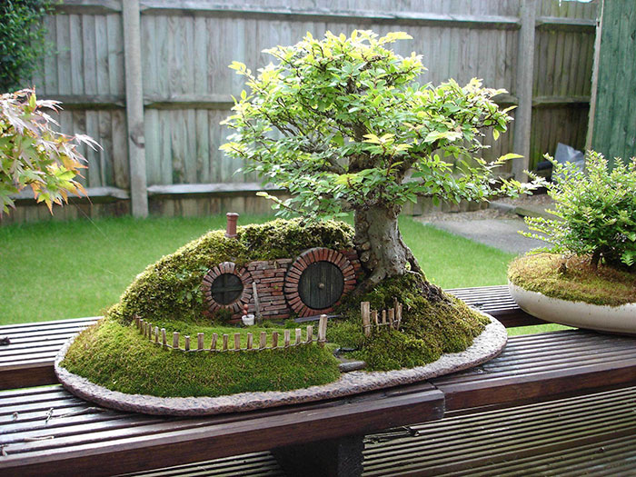 BONSAI CASA DE HOBBIT