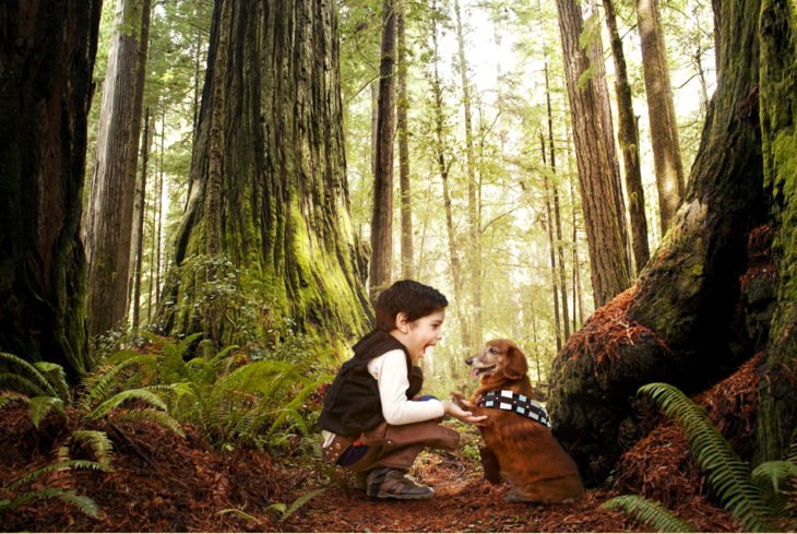 Batalla de Photoshop al niño y su perro vestidos de Han Solo y Chewbacca sobre un escenario de un bosque