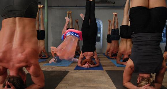Batalla de Photoshop de la caída de Zac Efron en un escenario de personas haciendo yoga
