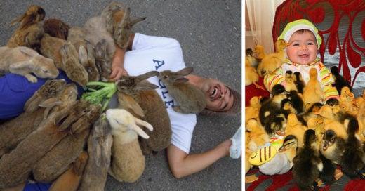 Ataques salvajes y adorables de animales