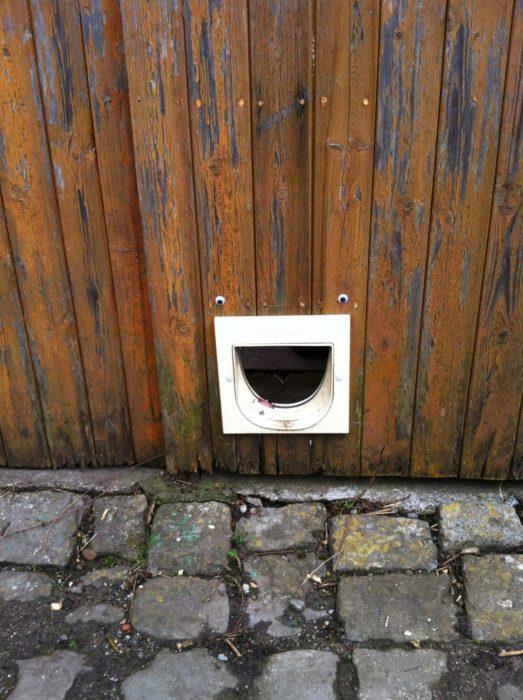 parte inferior de una puerta de madera con ojos de plástico