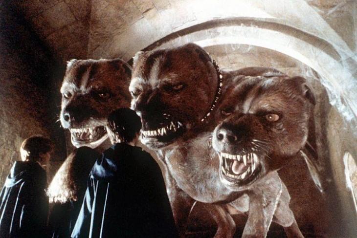 perro tres cabezas escena de la película de Harry Potter
