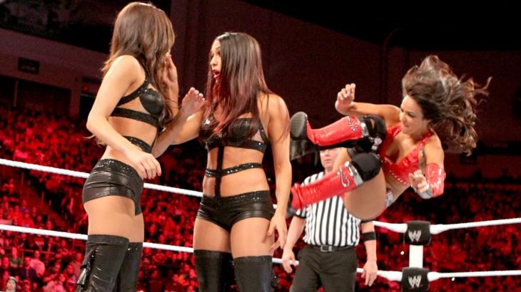 imagen donde una diva de la lucha wwe está a punto de golpear a otra mujer