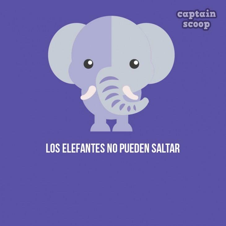 Ilustración de un elefante