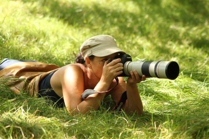 La fotógrafa holandesa Roeselien Raimond captó fotos de zorros salvajes en su estado Zen