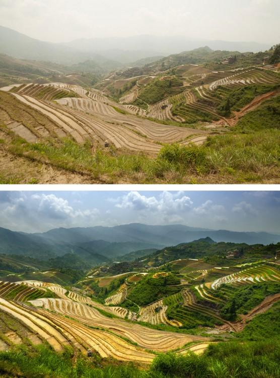 imagen comparativa del antes y después del photoshop en una imagen de campos verdes