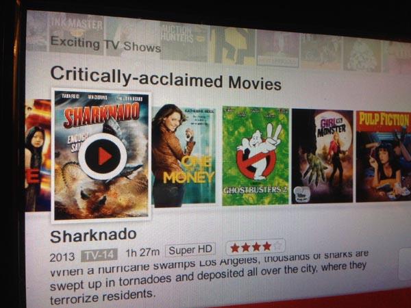 Netflix en las caricaturas aclamadas
