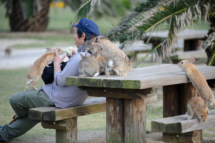 varios conejos se suben en un joven que está comiendo en una banca de un parque