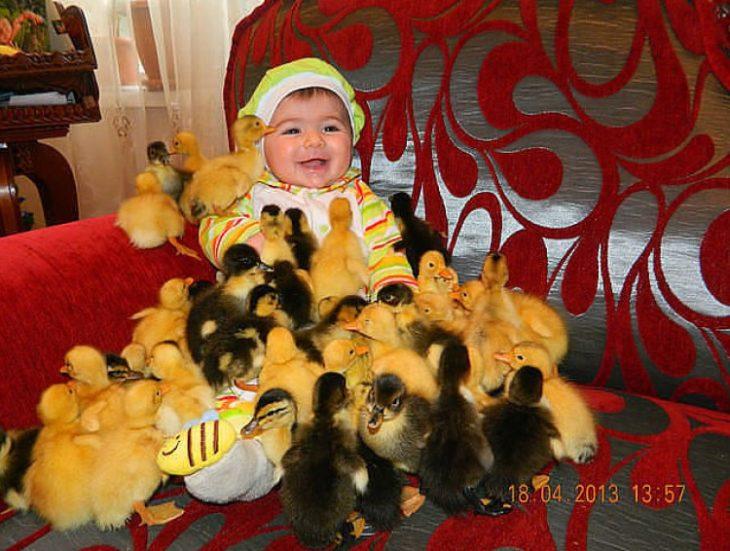 bebé rodeado de muchos patitos