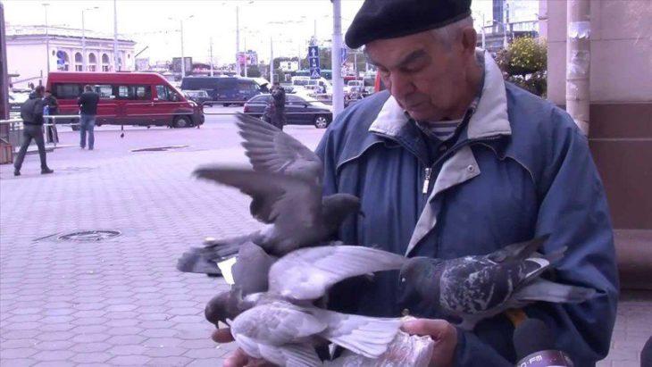 hombre con muchas palomas en sus manos