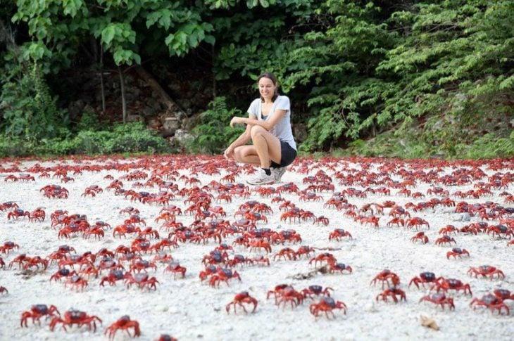 mujer en una isla rodeada de cangrejos