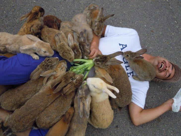 varios conejos se suben encima de un hombre que trae vegetales mientras el hombre está en el piso riéndose
