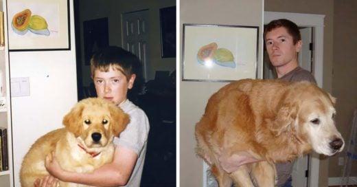 fotografías en las que se ve lo rápido que crecen las mascotas