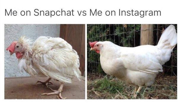 gallina snapchat e instagram