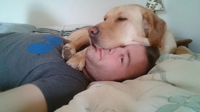 perro acostado con su cara encima de la cara de su dueño