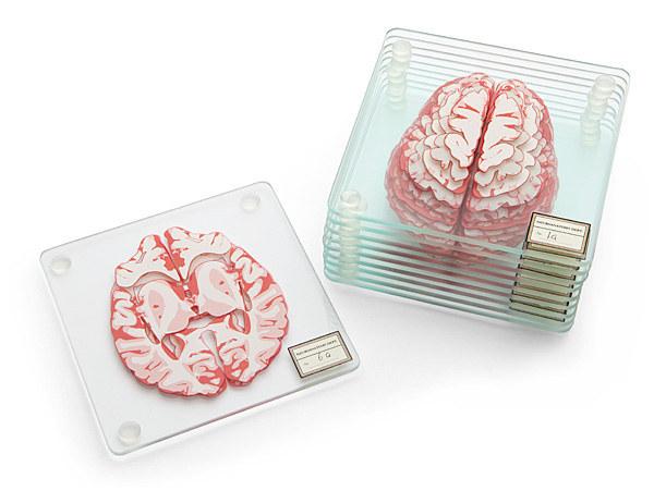 portavasos con el cerebro humano