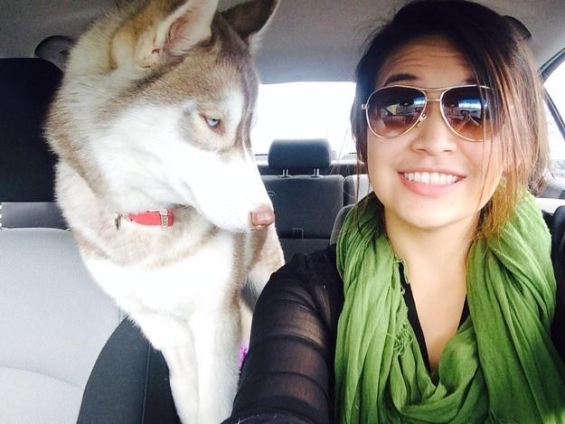 Mujer tomándose una foto con su perro Husky mientras éste la mira aburrido
