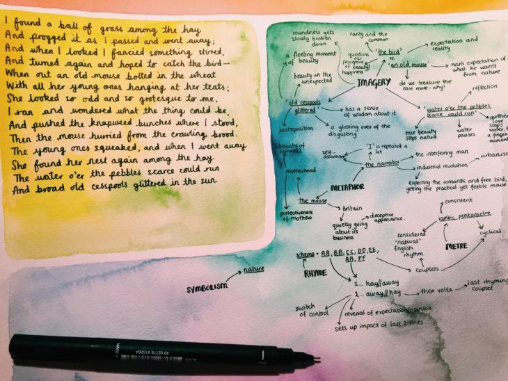 Apuntes organizados e inspiradores. Estudio con excelente tipografía y dibujo de acuarela