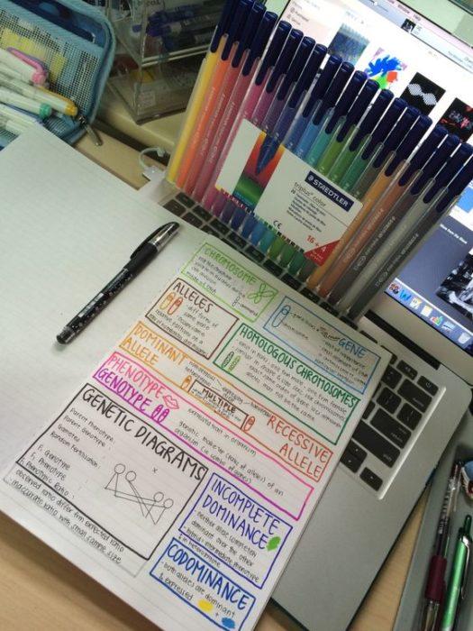 Apuntes organizados e inspiradores. Apuntes con plumones de muchos colores