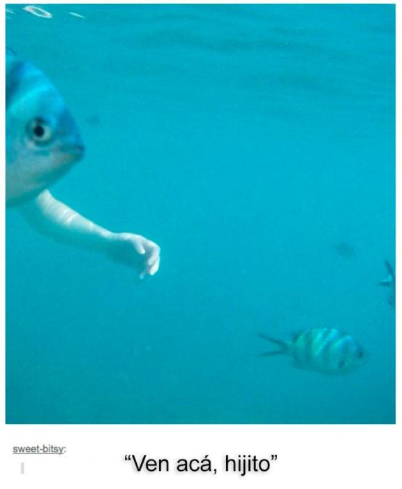 pez conmano de humano
