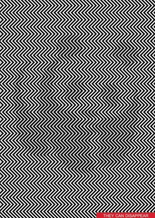 Ilusión óptica de un panda