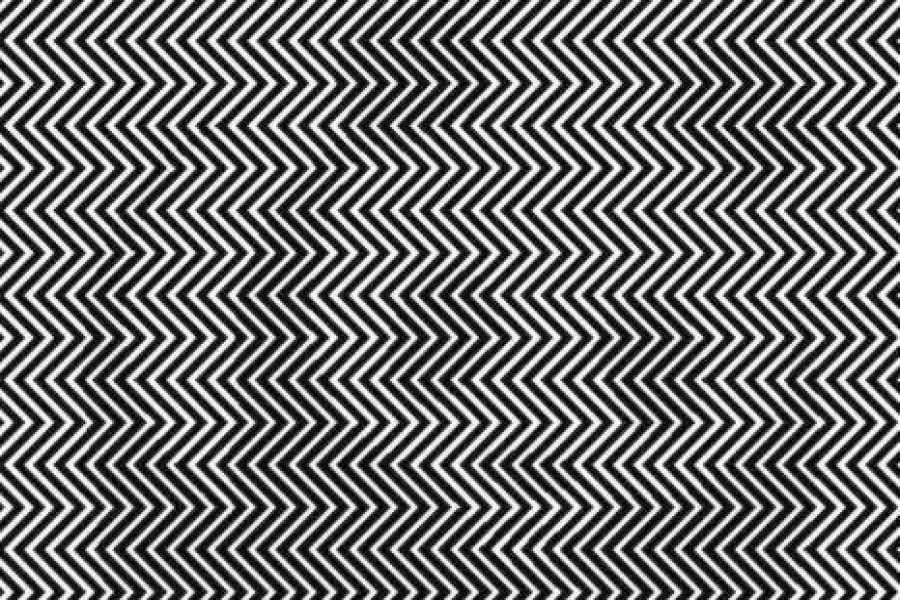 ¿Puedes ver el animal oculto en esta ilusión óptica