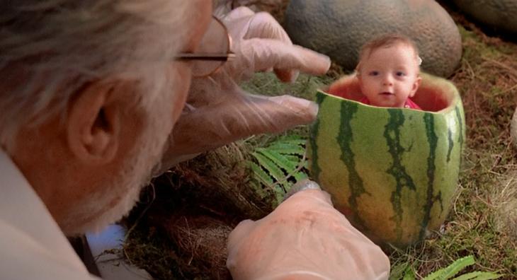 viendo la creación del bebé