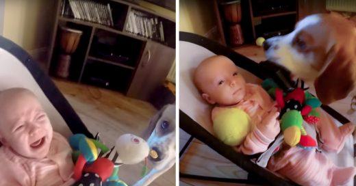 Perrito da juguetes a bebe para que no llore
