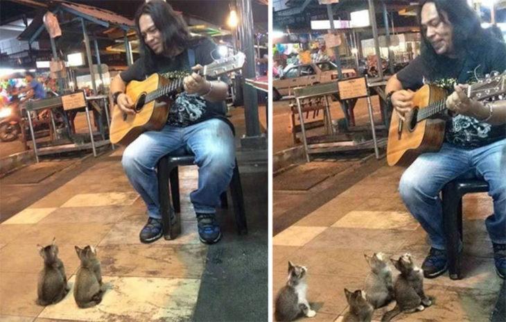 Este músico callejero cautivó a cuatro adorables gatitos