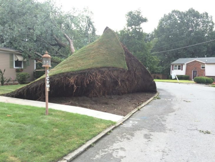 alfombra de grama levantada en el exterior de una casa
