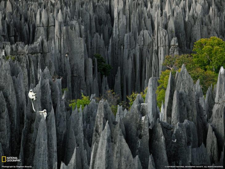 Parque Nacional Tsingy en África
