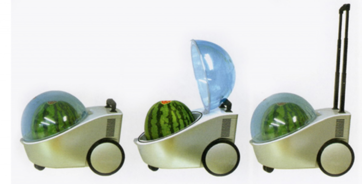 mini nevera ideal para transportar sandías