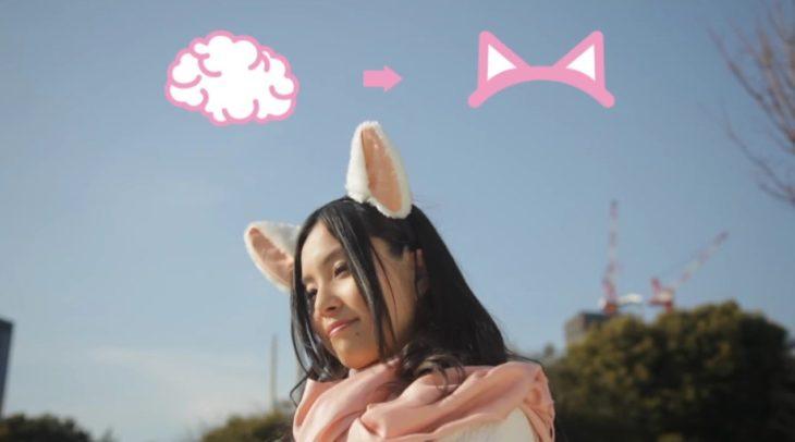 orejas de gato que se mueven depende de tu estado de animo