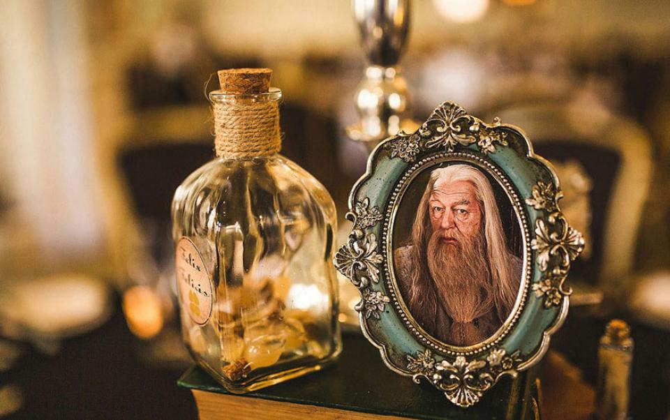 Pareja celebró su boda al estilo Harry Potter