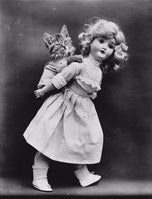 muñeca de porcelana cargando a un gatito