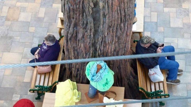 Abuelos separados por un árbol mientras se esperan uno al otro