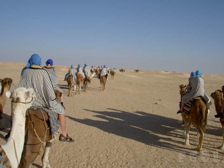 Personas sobre camellos en medio del desierto de Sahara