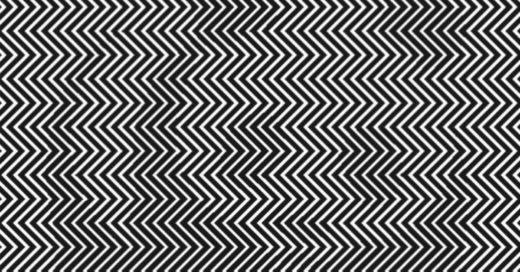 """La ilusión óptica """"Ellos pueden desaparecer"""""""