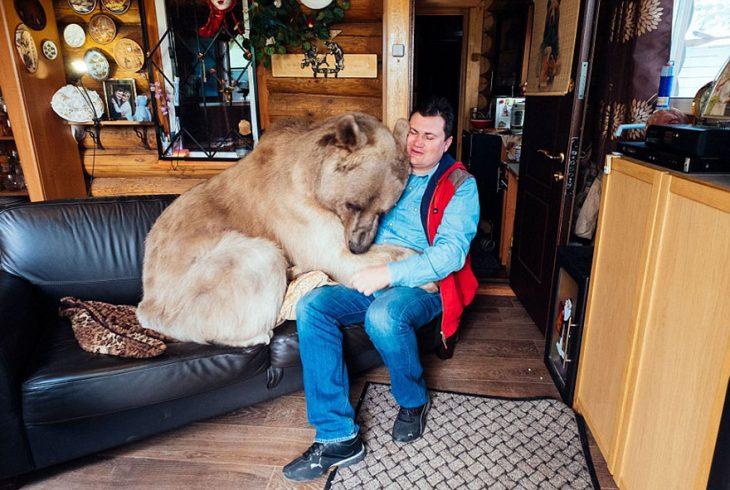 oso sentado en sofá con hombre