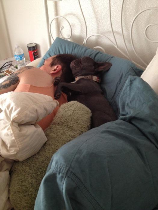 Perro acurrucado junto con su dueño mientras duermen
