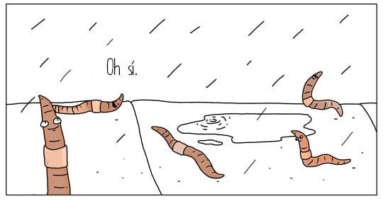 gusanos en la lluvia felices