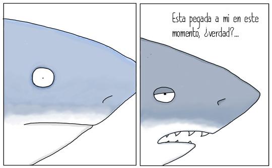 tiburones que hablan