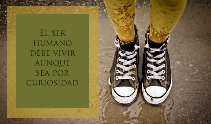 Proverbio judío - El ser humano debe vivir aunque sea por curiosidad