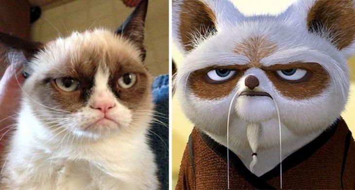 Parecido personajes caricaturas. Grumpy Cat y el Maestro Shifu