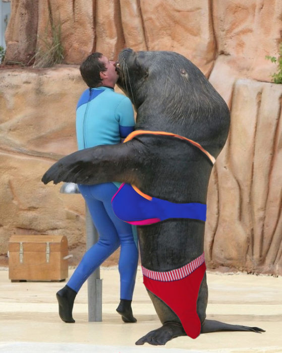 hombre dandole un beso a una foca completamente temeroso