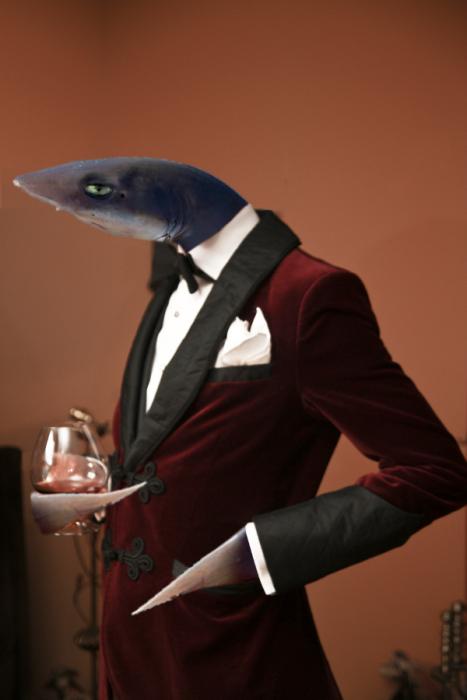 tiburon con un traje rojo