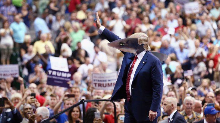 como candidato a la presidencia de Estados Unidos