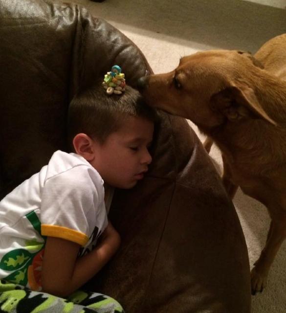 bebé con sus cherrios a punto de ser devorados por el perro