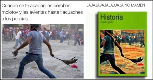 Maestros LANZAN TLACUACHE POR LOS CIELOS como bomba y se vuelve viral