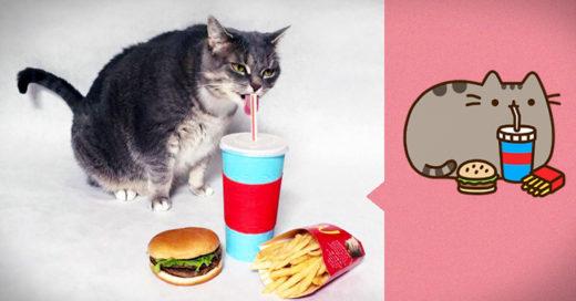 Recreó todos los Emojis de los gatitos pusheen